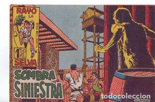 RAYO DE LA SELVA (MAGA) Nº 13 (Tebeos y Comics - Maga - Rayo de la Selva)