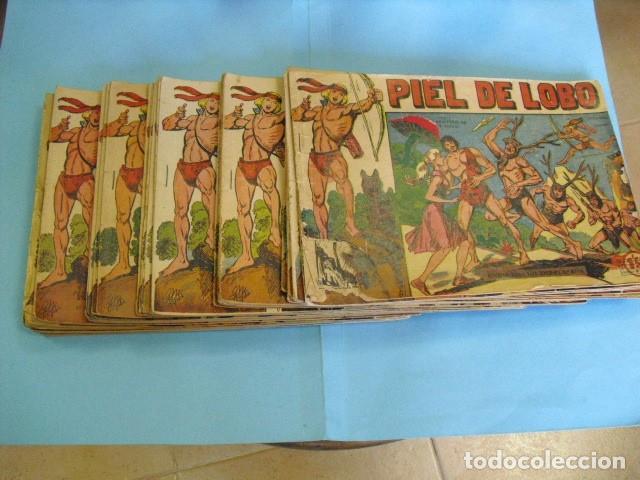 62 TEBEOS DE PIEL DE LOBO, DE MAGA1959, EL NUMERO 1 QUE ESTA COMO SEBE EN LA FOTO, ESTE DE REGALO, (Tebeos y Comics - Maga - Piel de Lobo)
