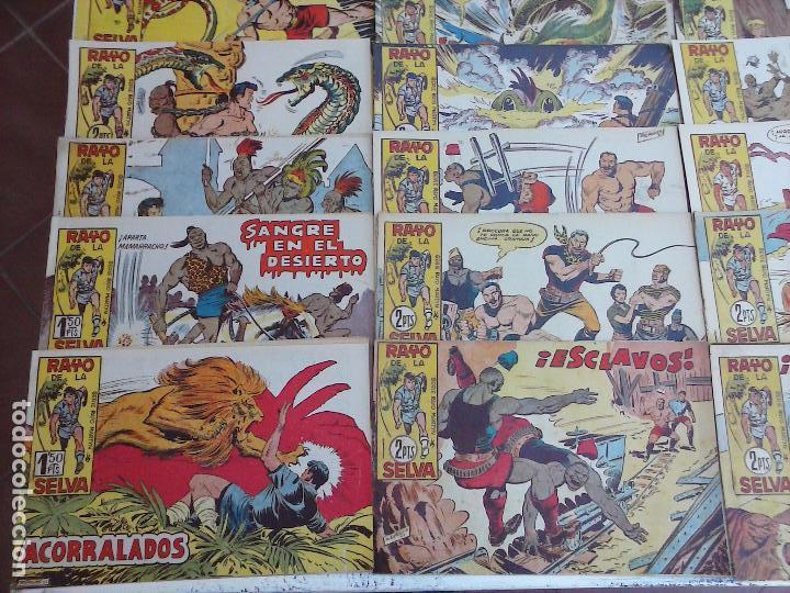 Tebeos: RAYO DE LA SELVA ORIGINAL COMPLETA 1 AL 83, 1960 MAGA,MUY BIEN CONSERVADOS - Foto 2 - 101163943