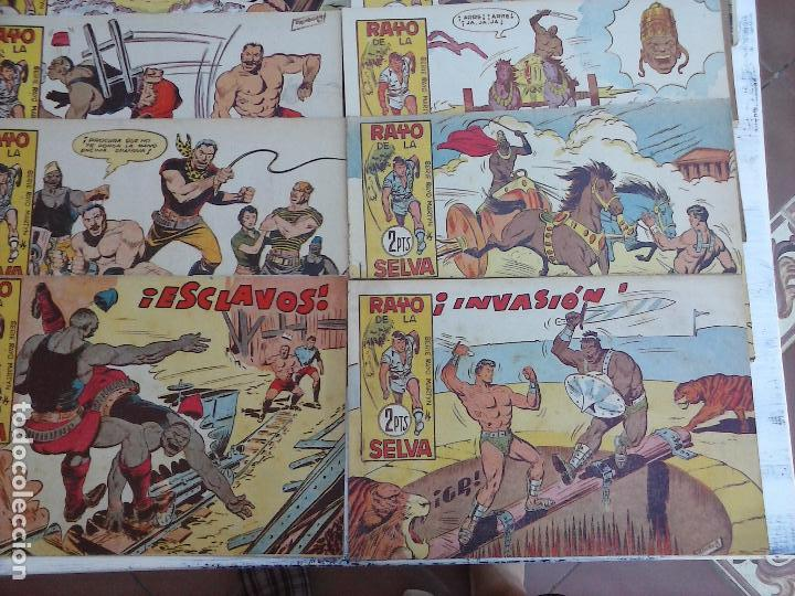 Tebeos: RAYO DE LA SELVA ORIGINAL COMPLETA 1 AL 83, 1960 MAGA,MUY BIEN CONSERVADOS - Foto 5 - 101163943