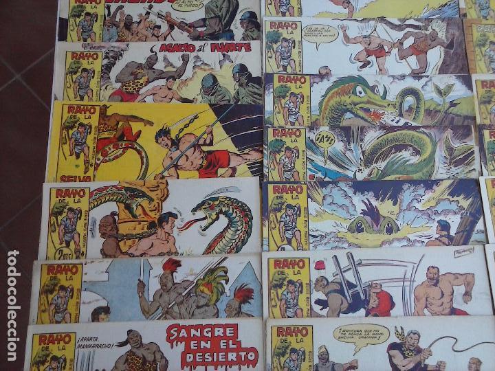 Tebeos: RAYO DE LA SELVA ORIGINAL COMPLETA 1 AL 83, 1960 MAGA,MUY BIEN CONSERVADOS - Foto 6 - 101163943