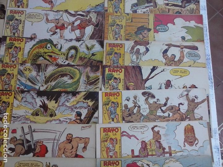 Tebeos: RAYO DE LA SELVA ORIGINAL COMPLETA 1 AL 83, 1960 MAGA,MUY BIEN CONSERVADOS - Foto 8 - 101163943