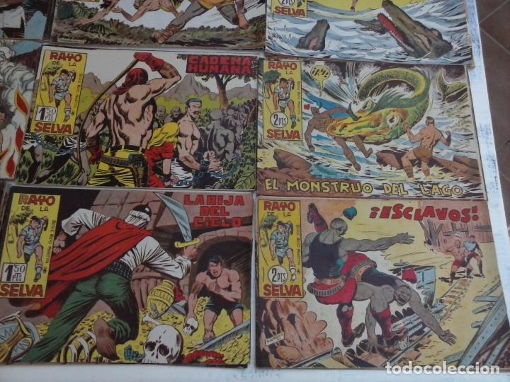 Tebeos: RAYO DE LA SELVA ORIGINAL COMPLETA 1 AL 83, 1960 MAGA,MUY BIEN CONSERVADOS - Foto 14 - 101163943
