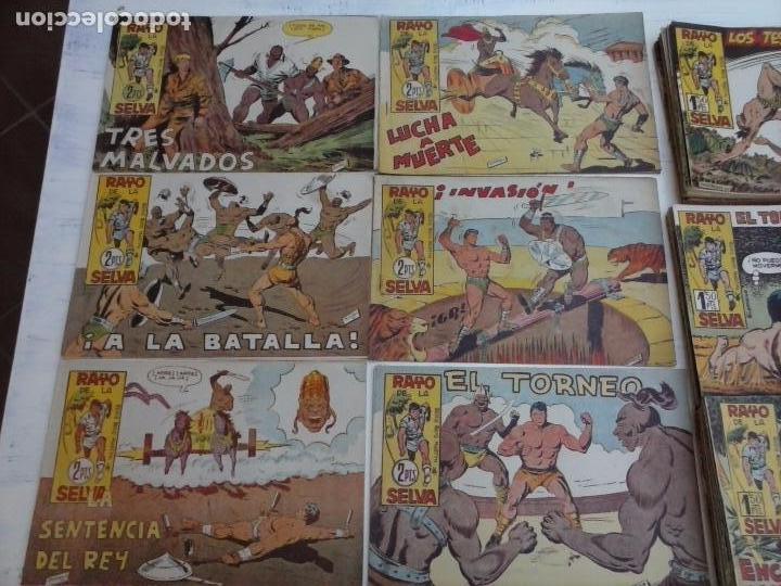 Tebeos: RAYO DE LA SELVA ORIGINAL COMPLETA 1 AL 83, 1960 MAGA,MUY BIEN CONSERVADOS - Foto 18 - 101163943