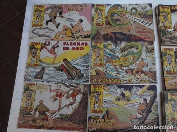 Tebeos: RAYO DE LA SELVA ORIGINAL COMPLETA 1 AL 83, 1960 MAGA,MUY BIEN CONSERVADOS - Foto 19 - 101163943