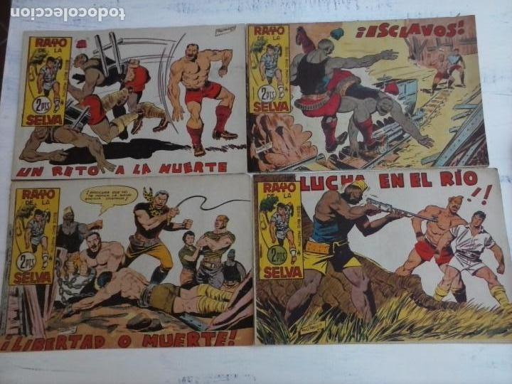 Tebeos: RAYO DE LA SELVA ORIGINAL COMPLETA 1 AL 83, 1960 MAGA,MUY BIEN CONSERVADOS - Foto 20 - 101163943
