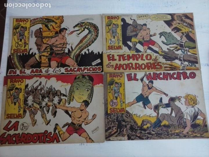 Tebeos: RAYO DE LA SELVA ORIGINAL COMPLETA 1 AL 83, 1960 MAGA,MUY BIEN CONSERVADOS - Foto 22 - 101163943