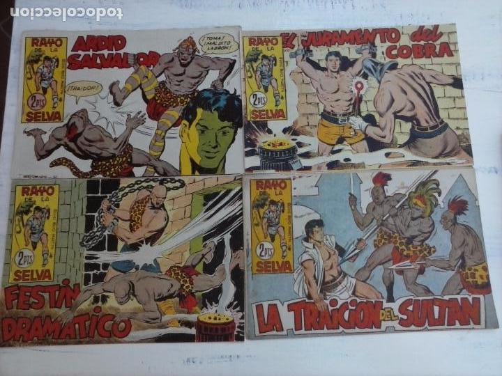 Tebeos: RAYO DE LA SELVA ORIGINAL COMPLETA 1 AL 83, 1960 MAGA,MUY BIEN CONSERVADOS - Foto 23 - 101163943