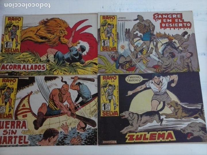 Tebeos: RAYO DE LA SELVA ORIGINAL COMPLETA 1 AL 83, 1960 MAGA,MUY BIEN CONSERVADOS - Foto 24 - 101163943