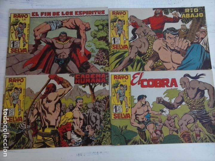 Tebeos: RAYO DE LA SELVA ORIGINAL COMPLETA 1 AL 83, 1960 MAGA,MUY BIEN CONSERVADOS - Foto 26 - 101163943