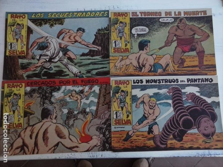 Tebeos: RAYO DE LA SELVA ORIGINAL COMPLETA 1 AL 83, 1960 MAGA,MUY BIEN CONSERVADOS - Foto 29 - 101163943