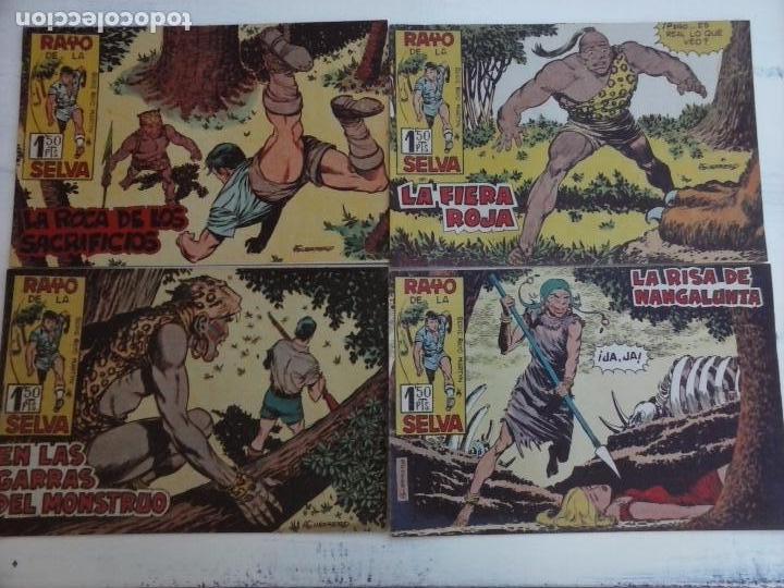 Tebeos: RAYO DE LA SELVA ORIGINAL COMPLETA 1 AL 83, 1960 MAGA,MUY BIEN CONSERVADOS - Foto 31 - 101163943