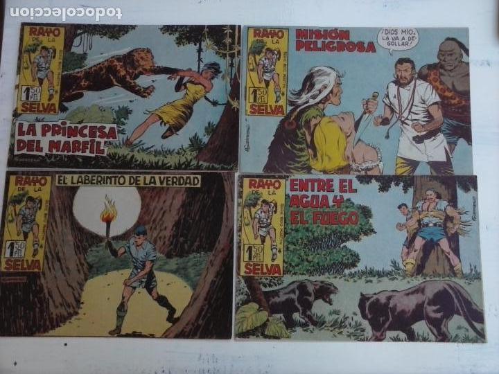 Tebeos: RAYO DE LA SELVA ORIGINAL COMPLETA 1 AL 83, 1960 MAGA,MUY BIEN CONSERVADOS - Foto 32 - 101163943