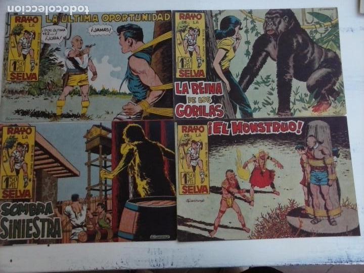 Tebeos: RAYO DE LA SELVA ORIGINAL COMPLETA 1 AL 83, 1960 MAGA,MUY BIEN CONSERVADOS - Foto 33 - 101163943