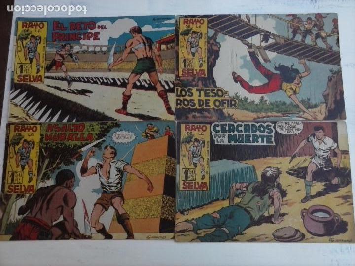 Tebeos: RAYO DE LA SELVA ORIGINAL COMPLETA 1 AL 83, 1960 MAGA,MUY BIEN CONSERVADOS - Foto 34 - 101163943