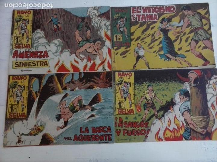 Tebeos: RAYO DE LA SELVA ORIGINAL COMPLETA 1 AL 83, 1960 MAGA,MUY BIEN CONSERVADOS - Foto 35 - 101163943