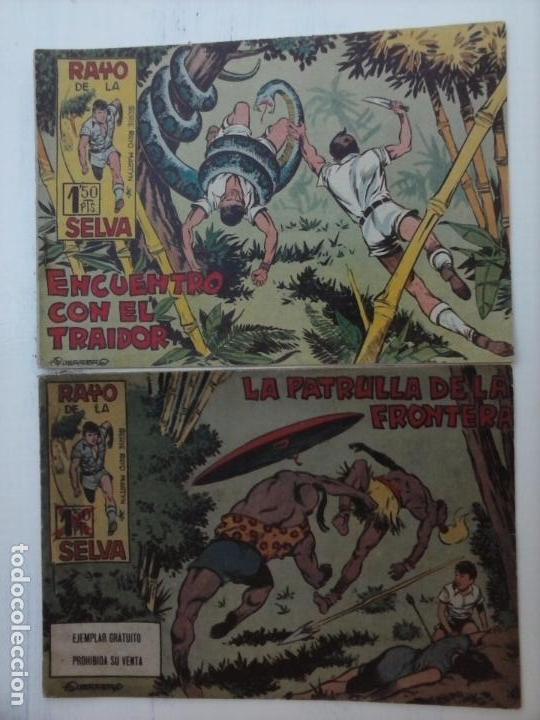 Tebeos: RAYO DE LA SELVA ORIGINAL COMPLETA 1 AL 83, 1960 MAGA,MUY BIEN CONSERVADOS - Foto 38 - 101163943