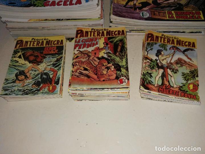 Tebeos: Maga/PEQUEÑO PANTERA NEGRA, COMPLETA, 1ª y 2ª parte (275 cuadernos) - Foto 2 - 111088667