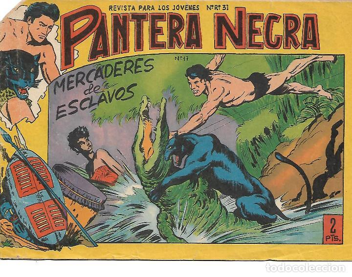 PANTERA NEGRA NUM 17 - ORIGINAL (Tebeos y Comics - Maga - Pantera Negra)