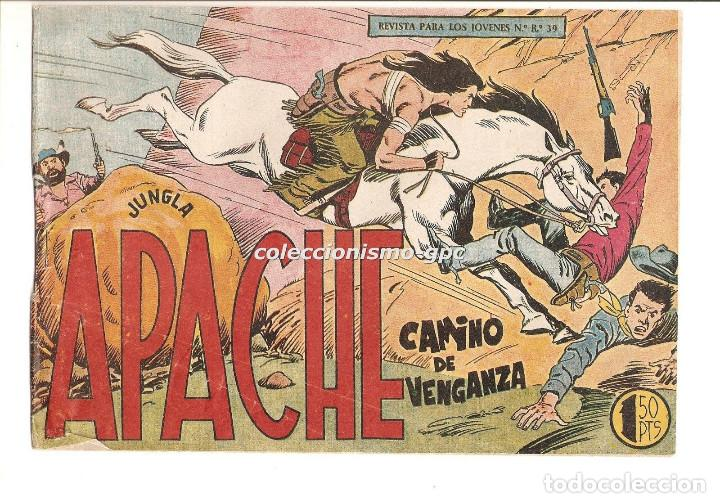 APACHE Nº 19 TEBEO ORIGINAL 1958 CAMINO DE VENGANZA EDITORIAL MAGA OFERTA !! MIRA !! (Tebeos y Comics - Maga - Apache)