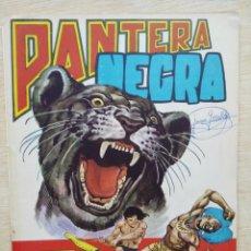 BDs: PANTERA NEGRA - REVISTA Nº 15 - ED. MAGA. Lote 164484834