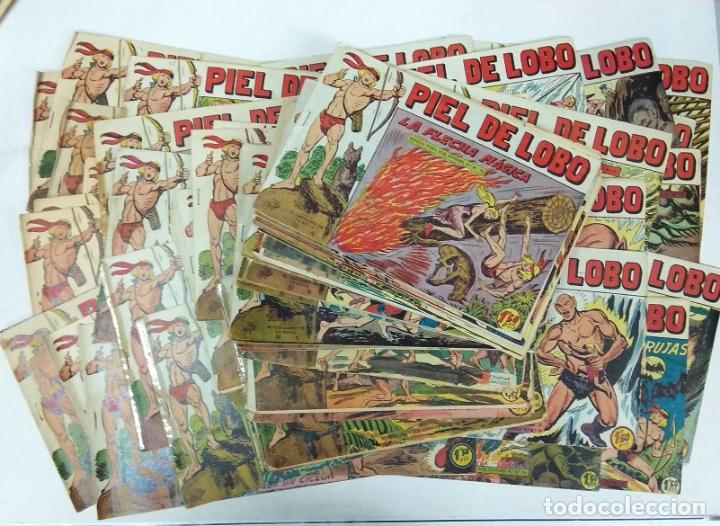 COLECCION COMPLETA 90 COMICS TBO PIEL DE LOBO ED MAGA AÑOS 50S ORIGINALES (Tebeos y Comics - Maga - Piel de Lobo)