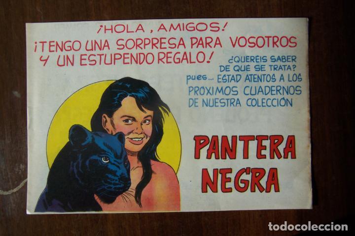 Tebeos: maga. pantera negra la - la columna vertebral de una editorial-lote 440 ejemplares - Foto 24 - 35228471