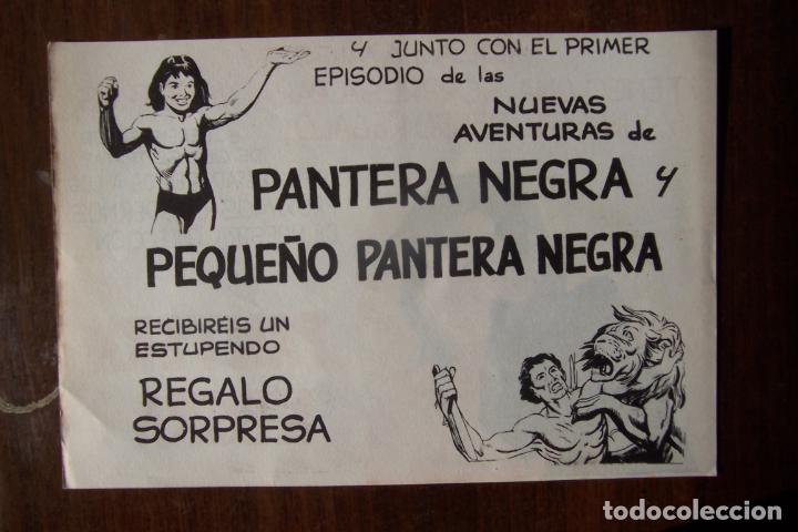 Tebeos: maga. pantera negra la - la columna vertebral de una editorial-lote 440 ejemplares - Foto 25 - 35228471