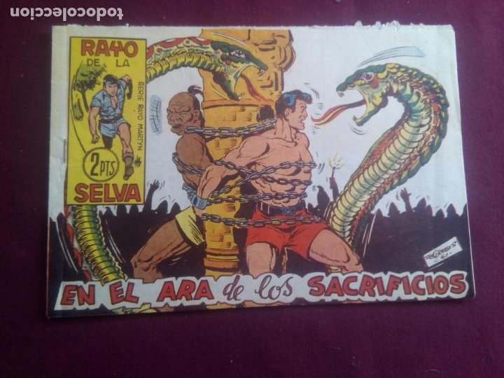 RAYO DE LA SELVA (Tebeos y Comics - Maga - Rayo de la Selva)