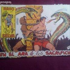 Livros de Banda Desenhada: RAYO DE LA SELVA. Lote 186228517