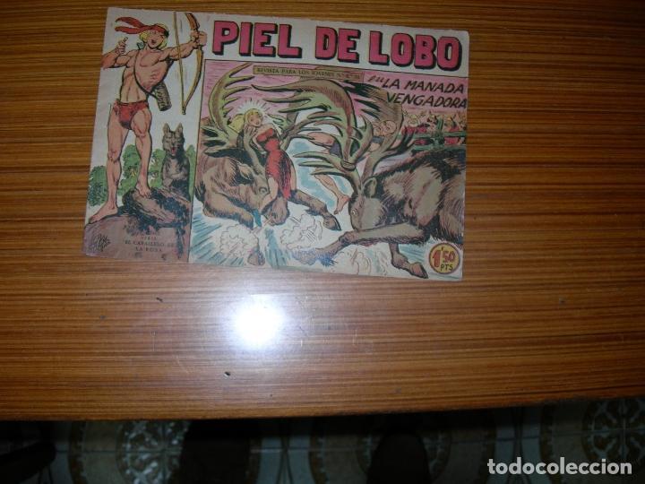 PIEL DE LOBO Nº 33 EDITA MAGA (Tebeos y Comics - Maga - Piel de Lobo)