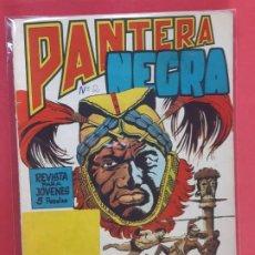Tebeos: PANTERA NEGRA Nº 2 REVISTA PARA JÓVENES MAGA. Lote 187502788