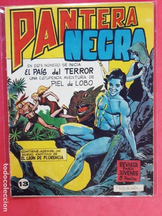 PANTERA NEGRA Nº 13 REVISTA PARA JÓVENES-MAGA (Tebeos y Comics - Maga - Pantera Negra)