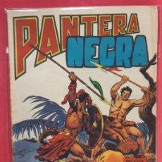 Tebeos: PANTERA NEGRA Nº 14 REVISTA PARA JÓVENES MAGA. Lote 187503635