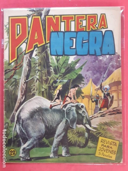 PANTERA NEGRA Nº 22 REVISTA PARA JÓVENES MAGA (Tebeos y Comics - Maga - Pantera Negra)