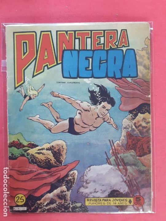 PANTERA NEGRA Nº 25 REVISTA PARA JÓVENES MAGA (Tebeos y Comics - Maga - Pantera Negra)