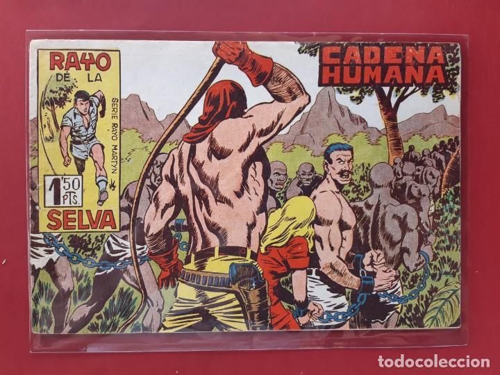 RAYO DE LA SELVA Nº 42 ORIGINAL MAGA 1960 (Tebeos y Comics - Maga - Rayo de la Selva)