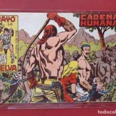 Tebeos: RAYO DE LA SELVA Nº 42 ORIGINAL MAGA 1960. Lote 190524596