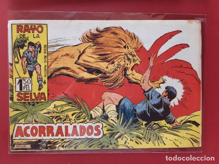RAYO DE LA SELVA Nº 49 ORIGINAL MAGA 1960 (Tebeos y Comics - Maga - Rayo de la Selva)