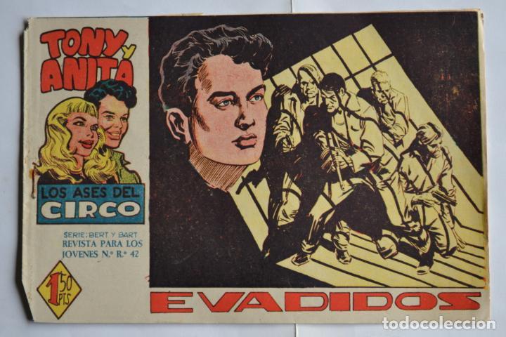 TONY Y ANITA, LOS ASES DEL CIRCO, Nº 25. ORIGINAL DE MAGA. LITERACOMIC. (Tebeos y Comics - Maga - Tony y Anita)