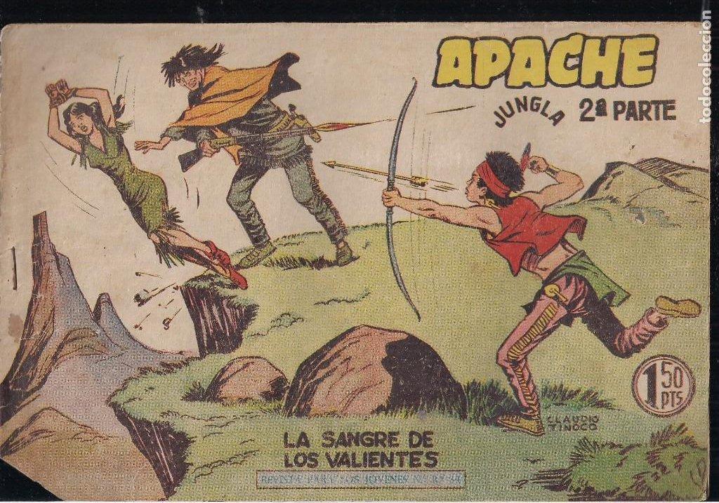 Tebeos: APACHE 2ª PARTE LOTE DE 39 EJEMPLARES - Foto 19 - 195189596