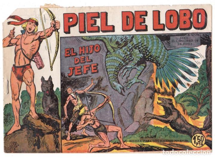 PIEL DE LOBO Nº 2, EDITORIAL MAGA (Tebeos y Comics - Maga - Piel de Lobo)