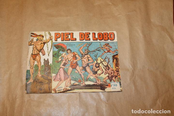 PIEL DE LOBO Nº 15, EDITORIAL MAGA (Tebeos y Comics - Maga - Piel de Lobo)
