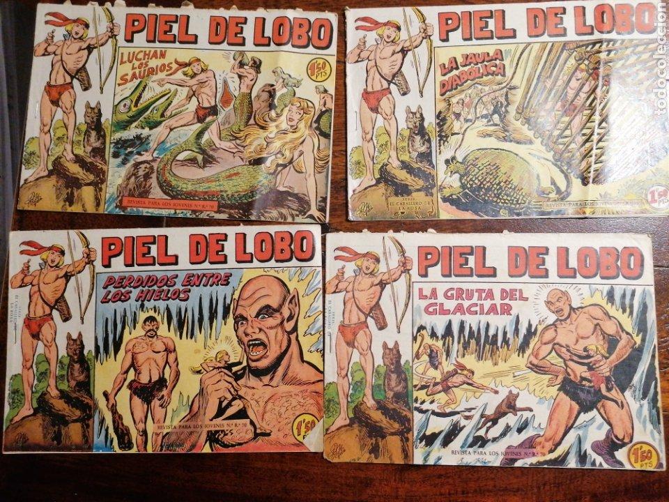 CÓMIC TEBEO PIEL DE LOBO ED. MAGA LOTE 12 NÚMEROS ORIGINALES (Tebeos y Comics - Maga - Piel de Lobo)