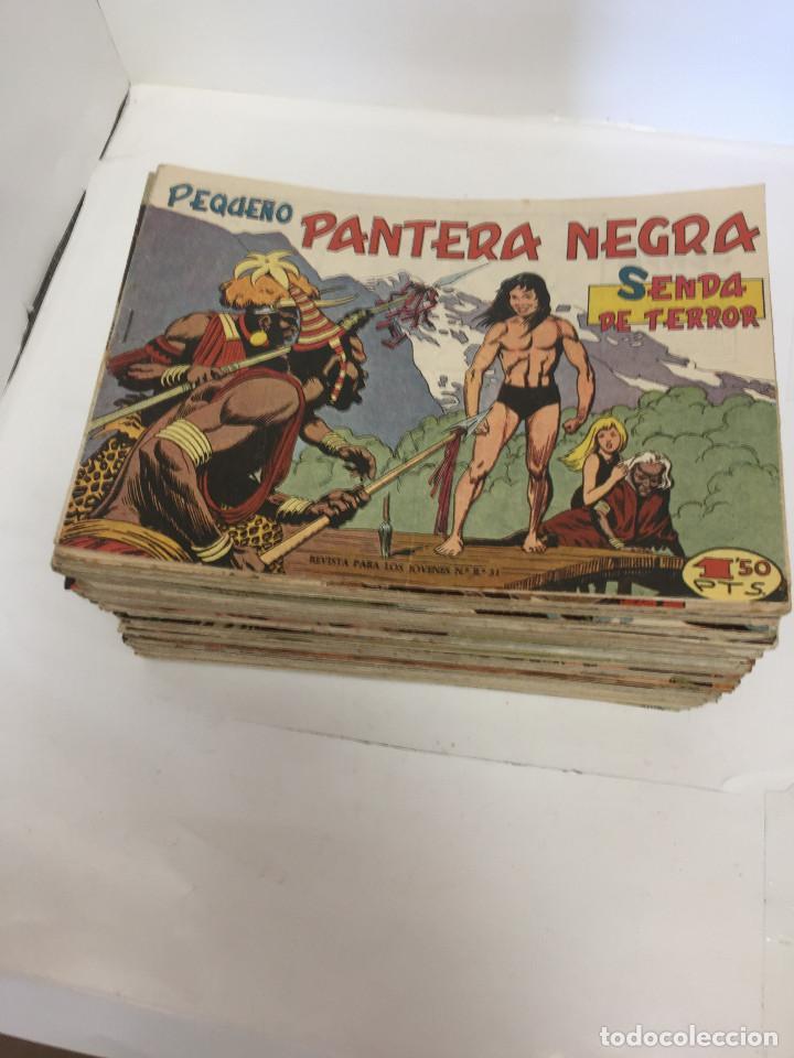 LOTE PEQUEÑO PANTERA NEGRA (125 - 329) ¡196 NÚMEROS ! ORIGINAL - 1952 - 1955 *** EDITORIAL MAGA *** (Tebeos y Comics - Maga - Pantera Negra)