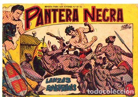 PANTERA NEGRA (MAGA) Nº 2 (Tebeos y Comics - Maga - Pantera Negra)