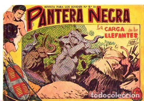 PANTERA NEGRA (MAGA) Nº 5 (Tebeos y Comics - Maga - Pantera Negra)