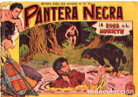 PANTERA NEGRA (MAGA) Nº 6 PORTADA MAL (Tebeos y Comics - Maga - Pantera Negra)