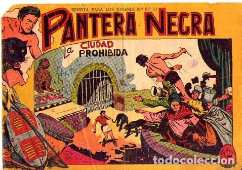 PANTERA NEGRA (MAGA) Nº 8 (Tebeos y Comics - Maga - Pantera Negra)