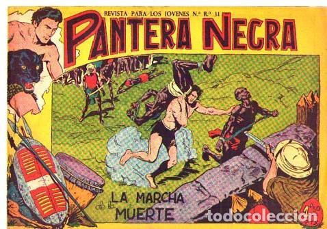 PANTERA NEGRA (MAGA) Nº 15 (Tebeos y Comics - Maga - Pantera Negra)